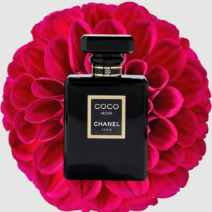Perfume gifts Pakistan