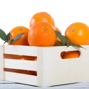 Dozen oranges delivery to Pakistan